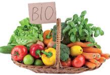 Bio Expo Maroc