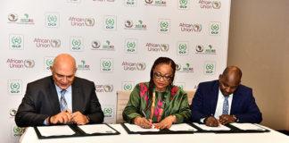 OCP Union africaine UA